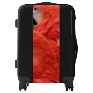 Scarlet Macaw Luggage