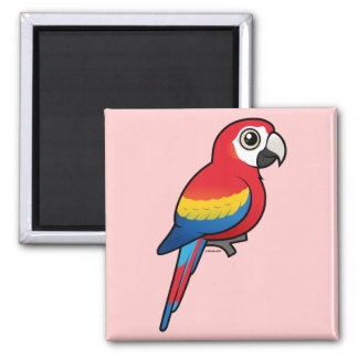 Scarlet Macaw Magnet