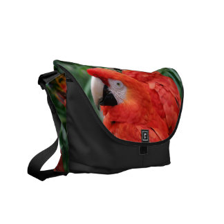 Scarlet Macaw Messenger Bag