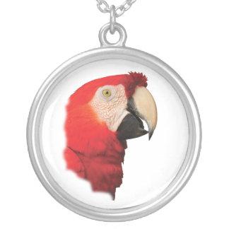 scarlet macaw jewelry