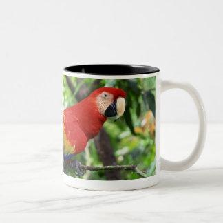 Scarlet macaw on tree limb Two-Tone coffee mug
