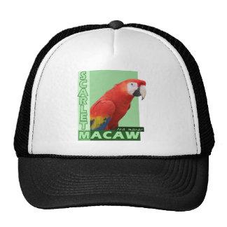 Scarlet Macaw Photo Trucker Hat