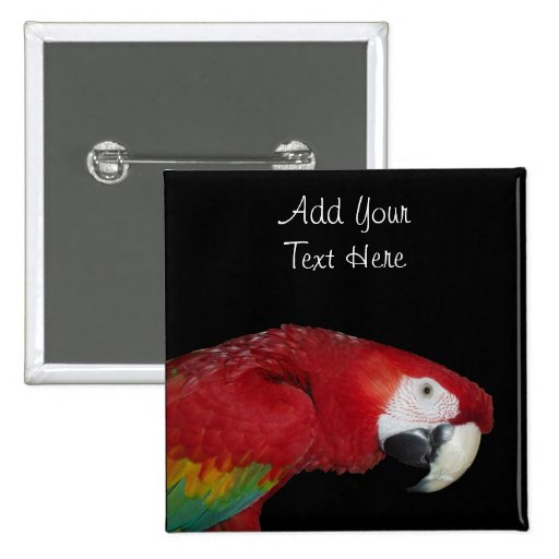 Scarlet Macaw Pinback Buttons