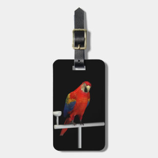 Scarlet Macaw Tag For Luggage