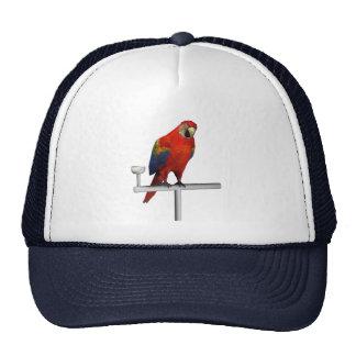 Scarlet Macaw Trucker Hat