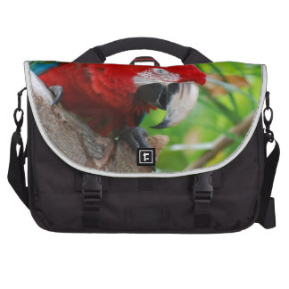 Scarlet Macaw with a Sharp Beak Commuter Bag