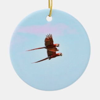 Scarlet Mackaw Couple Flying Ceramic Ornament
