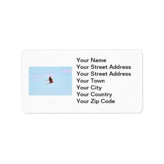 Scarlet Mackaw Couple Flying Label