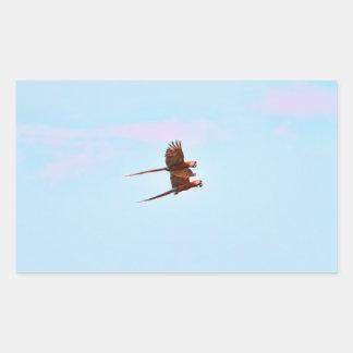 Scarlet Mackaw Couple Flying Rectangular Sticker
