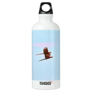 Scarlet Mackaw Couple Flying Water Bottle