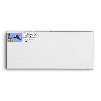 Scarlet Mackaw Flying Envelopes