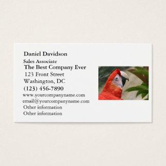 Scarlet Mackaw Photo Business Card