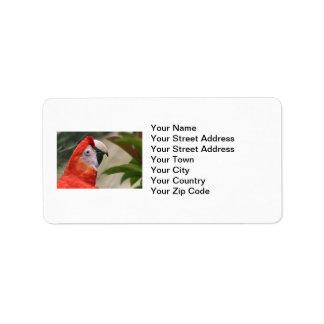 Scarlet Mackaw Photo Address Label