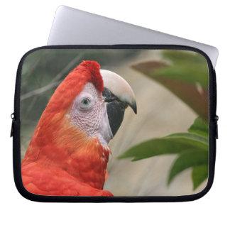 Scarlet Mackaw Photo Laptop Sleeve