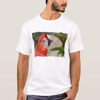 Scarlet Mackaw Photo T-Shirt