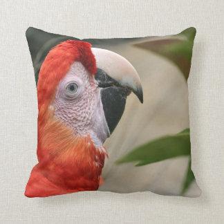 Scarlet Mackaw Photo Throw Pillow