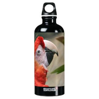 Scarlet Mackaw Photo Water Bottle