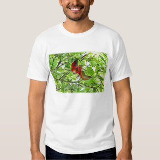 Scarlet Mackaws Picture T-Shirt
