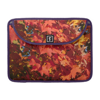 Scarlet Maple Leaves Sleeve For MacBook Pro