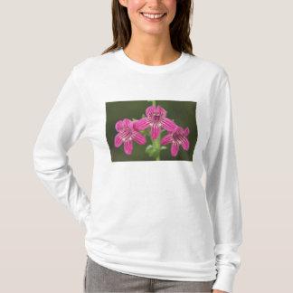 Scarlet Penstemon, Penstemon triflorus, T-Shirt