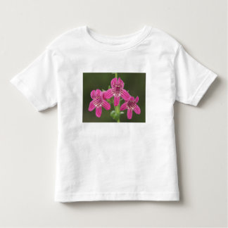 Scarlet Penstemon, Penstemon triflorus, Toddler T-shirt
