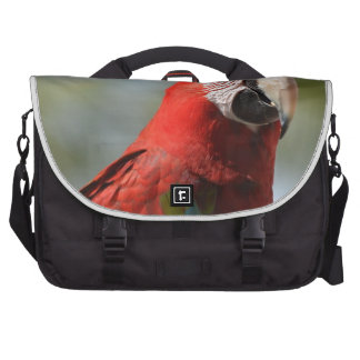 Scarlet Red Macaw Commuter Bag