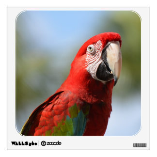 Scarlet Red Macaw Room Decals