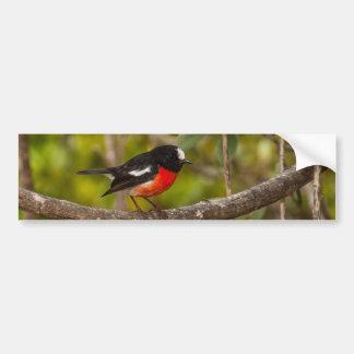 Scarlet Robin Bumper Sticker