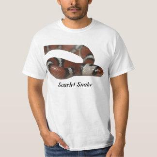 Scarlet Snake Value T-Shirt