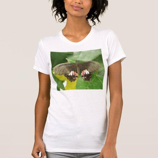 Scarlet Swallowtail Butterfly T Shirt