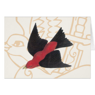 Scarlet Tanager a American Song Bird Cards
