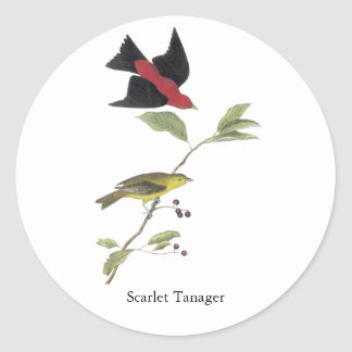 Scarlet Tanager - John James Audubon Classic Round Sticker