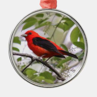 Scarlet Tanager Metal Ornament
