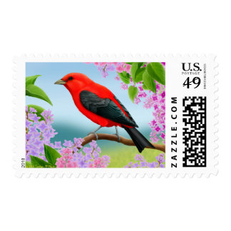 Scarlet Tanager Red Bird Postage