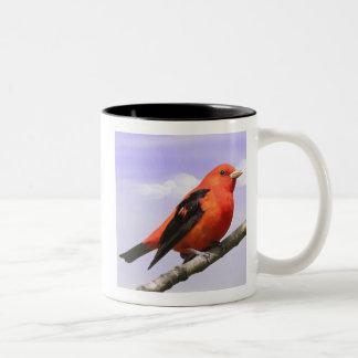 Scarlet Tanager Two-Tone Coffee Mug