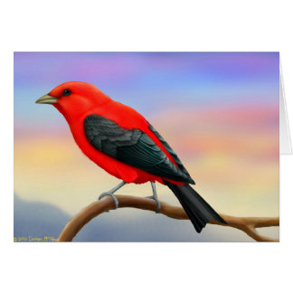 Scarlet Tanager Wild Bird Card