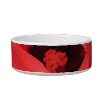 Scarlet Tulip Bowl
