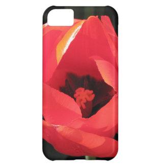 Scarlet Tulip iPhone 5C Cases