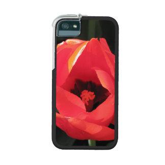Scarlet Tulip iPhone 5 Case