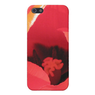 Scarlet Tulip Case For iPhone 5