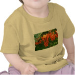 Scarlet Wisteria (Sesbania punicea) OBX Baby Shirt