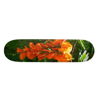 Scarlet Wisteria (Sesbania punicea) Skateboard