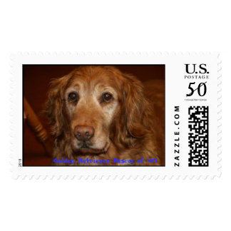 Scarlett, Golden Retriever Rescue of WI Postage