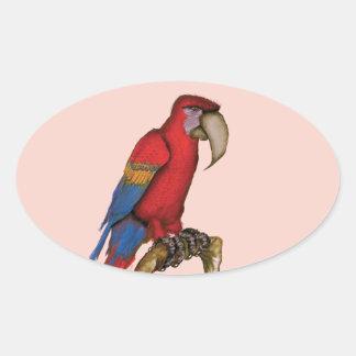 scarlett macaw, tony fernandes oval sticker