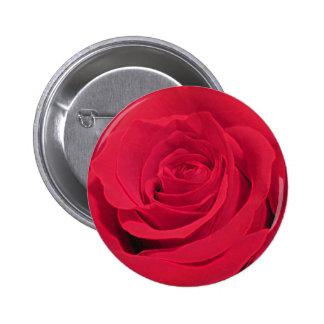 Scarlett Rose Pin