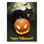 Scary Cat and Pumpkin Halloween Postcard