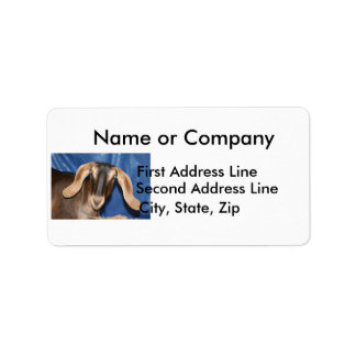 Scary eyed Nubian goat kid head picture Label