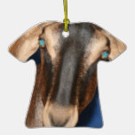 Scary eyed Nubian goat kid head picture Christmas Ornament
