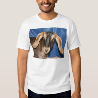 Scary eyed Nubian goat kid head picture T-Shirt