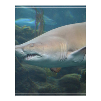 Scary Great White Shark Personalized Letterhead